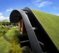Coole Gartengestaltung Idee – grüne Oase auf der Dachterrasse