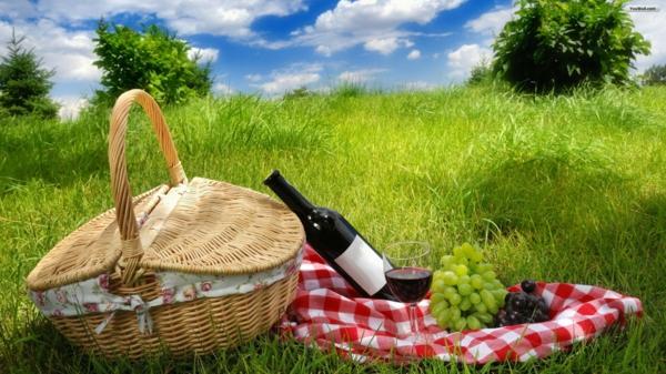 coole picknick ideen familie interessant angenehm