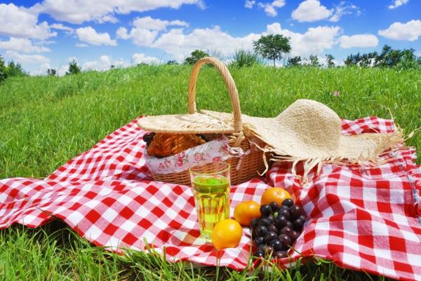 coole picknick ideen familie interessant frisch getränke