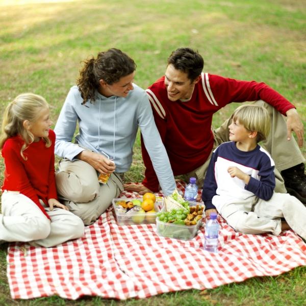 picknick draußen freien machen familie mama sohn tochter vater