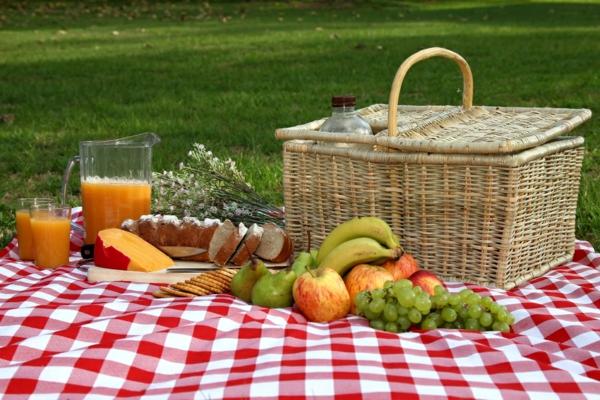 coole picknick  ideen korb gemüse obst decke
