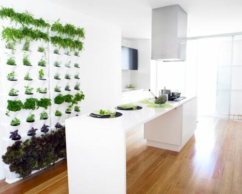 coole praktische deko ideen urbio küche wand kräuter