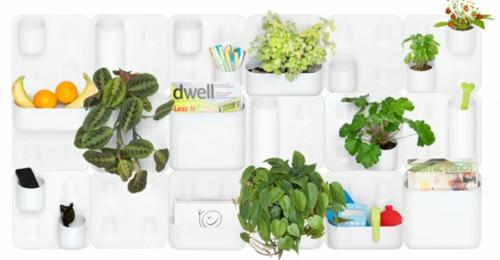 coole praktische deko ideen urbio wanddeko pflanzen obst