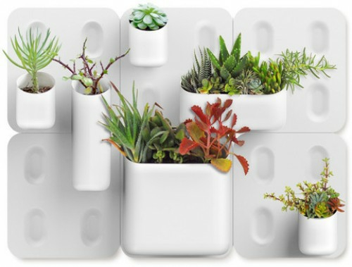 coole praktische deko ideen urbio wanddeko pflanzen