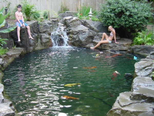 Dekorativen Teich Im Garten Anlegen Schwimmen
