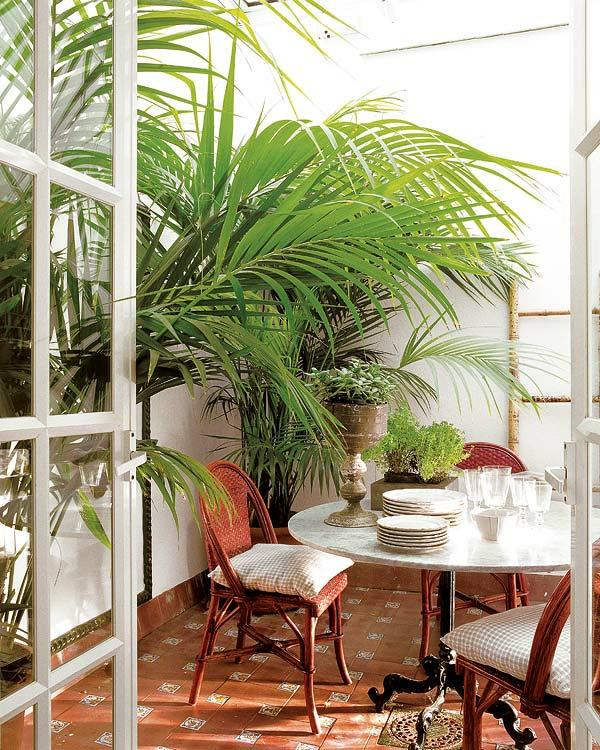 den balkon einrichten tisch geschirr stühle geflochten tropenpflanzen