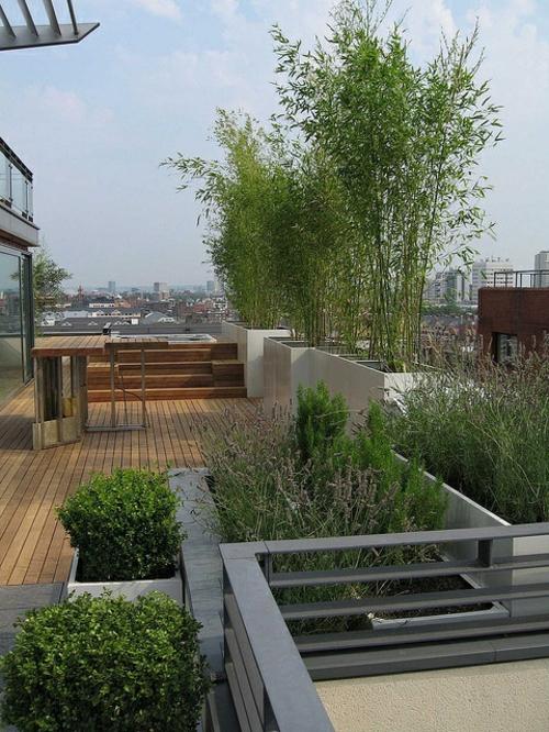 Designer dachterrasse 30 coole einrichtungsideen for Designer pflanzen