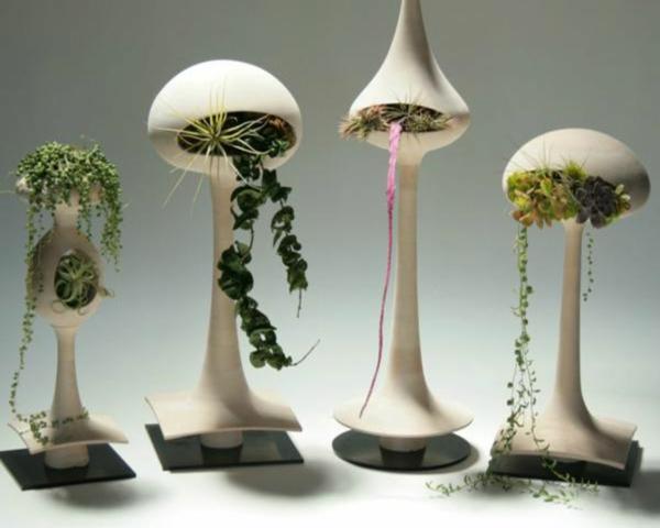 Indoor Garten Anlegen Geeignete Pflanzen Ruhevollen Indoor Garten