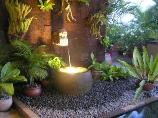 moderne coole Garten Gestaltung wasseranlage palmen