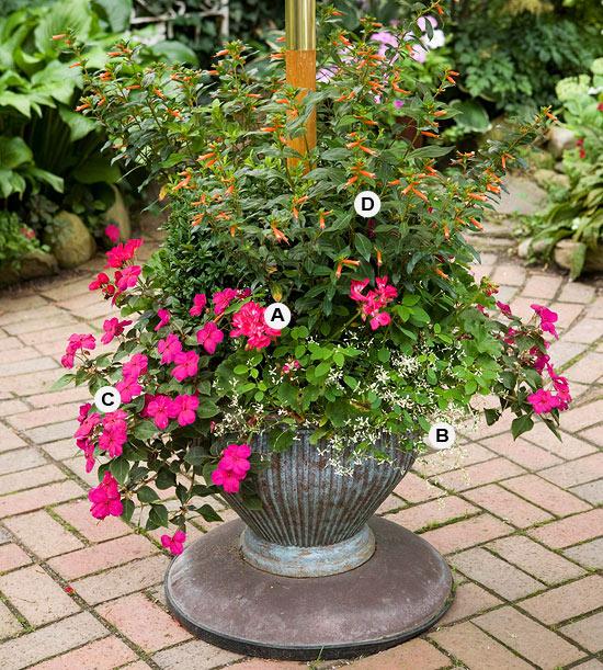 perfekte blumen behälter pflanzen modern farben