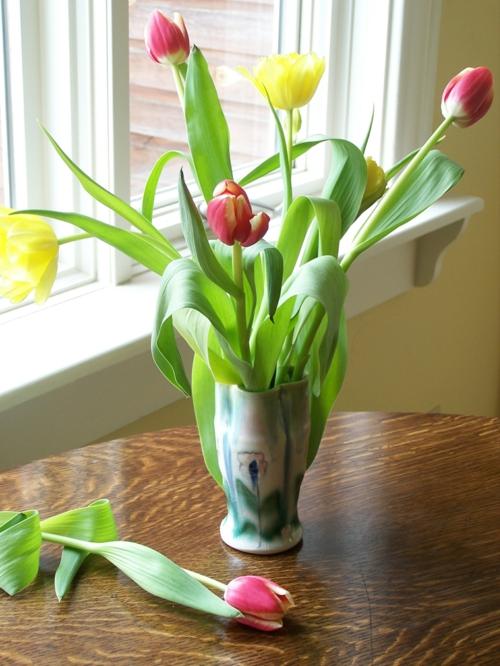schöne frische blumen tulpen fühling bunt