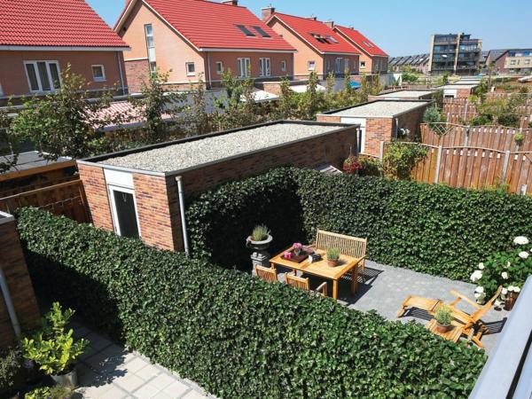 Sichtschutz Fur Terrasse Eine Grune Wand Schutzt Ihre Privatsphare