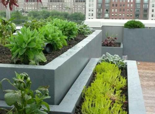 frischen dach garten gestalten idee design
