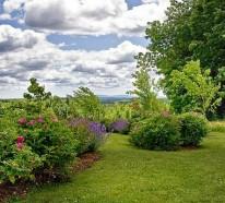 Gestalten Sie schönen Garten nur mit einigen einfachen Tricks