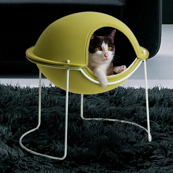 katzen und hunden häuser idee klein modern kompakt