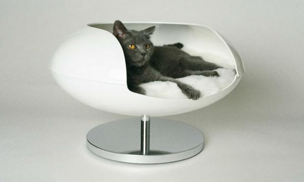 katzen und hunden h user einrichtungsl sungen f r ihre haustiere. Black Bedroom Furniture Sets. Home Design Ideas