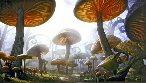alice im wunderland märchenhaft wald pilze zaubern