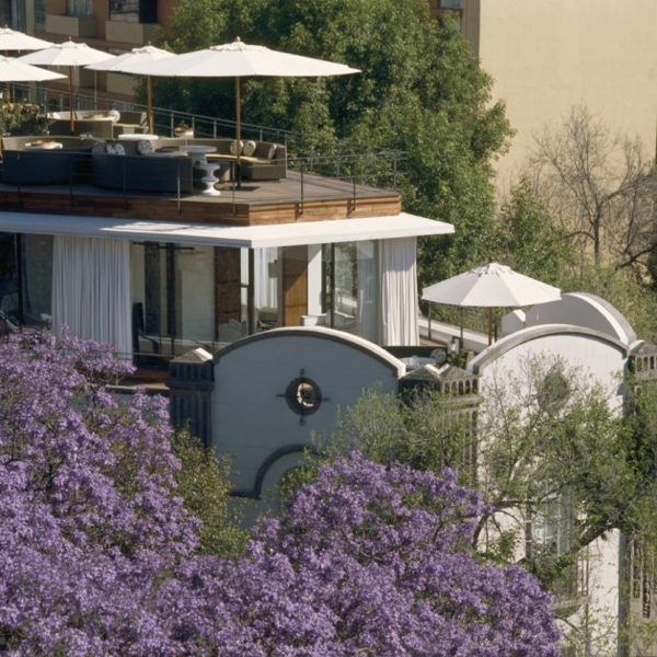 modernes funktionales hotel französsisch neoklassisch baum blüten lila
