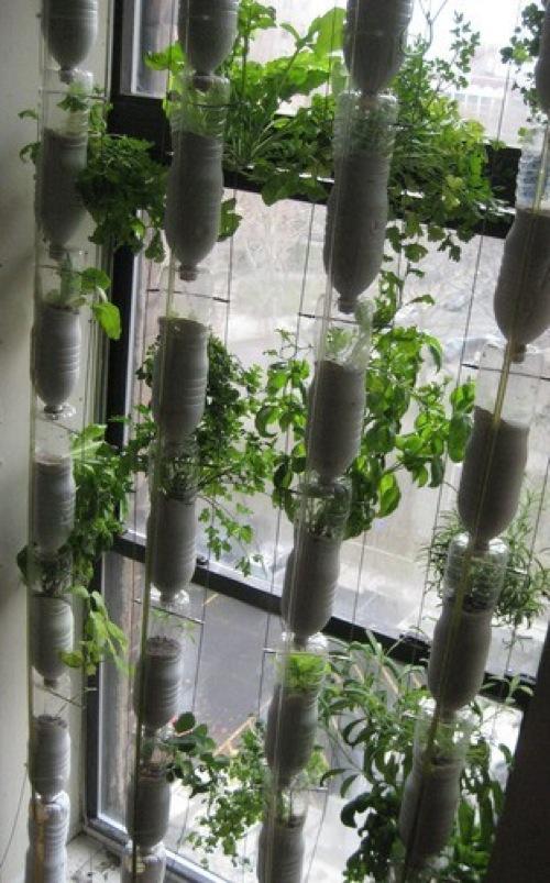 Vertikalen Garten Gestalten 10 Eigenartige Und Herrliche Ideen