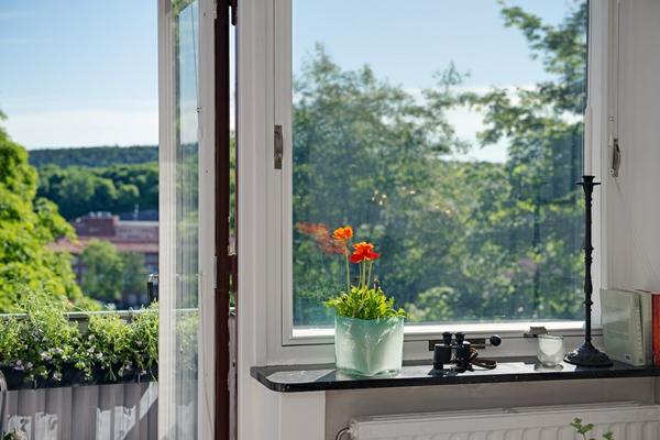 Charmante-Einzimmerwohnung-in-Schweden-fenster-blumentopf