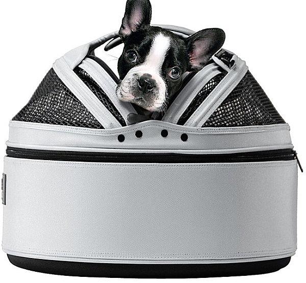 Designer Möbel und Accessoires für Haustiere bett hund