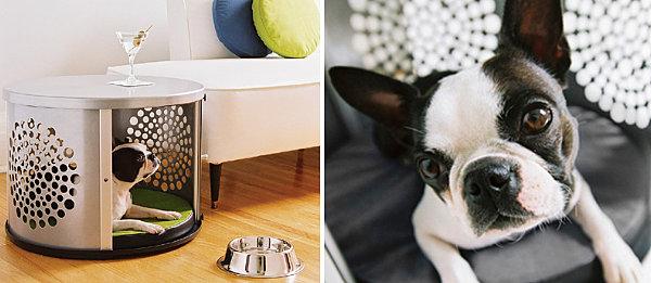 Designer Möbel und Accessoires für Haustiere hund metall