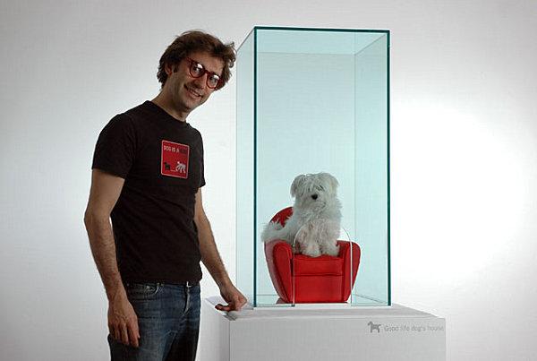 Designer Möbel und Accessoires für Haustiere hund sessel glas