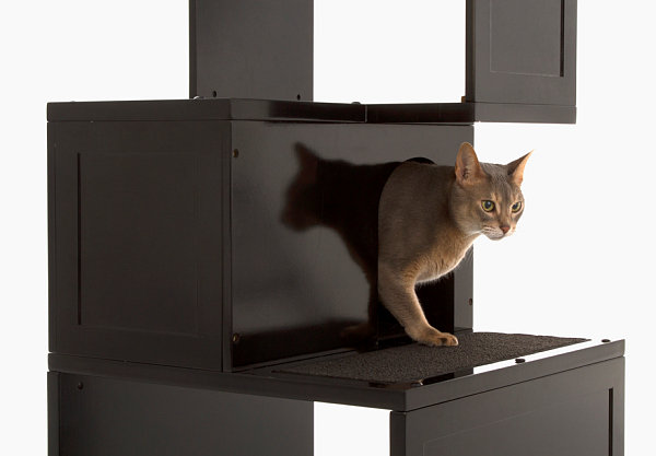 Designer Möbel und Accessoires für Haustiere regale schwarz