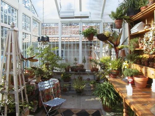 Gartenhaus im Hinterhof blumen wintergarten fenster sonne