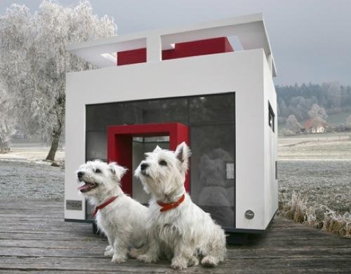 attraktive möbel für haustiere haus weiß rot cubix