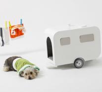 Das verwöhnte Hündchen: Unverschämte attraktive Möbel für Haustiere