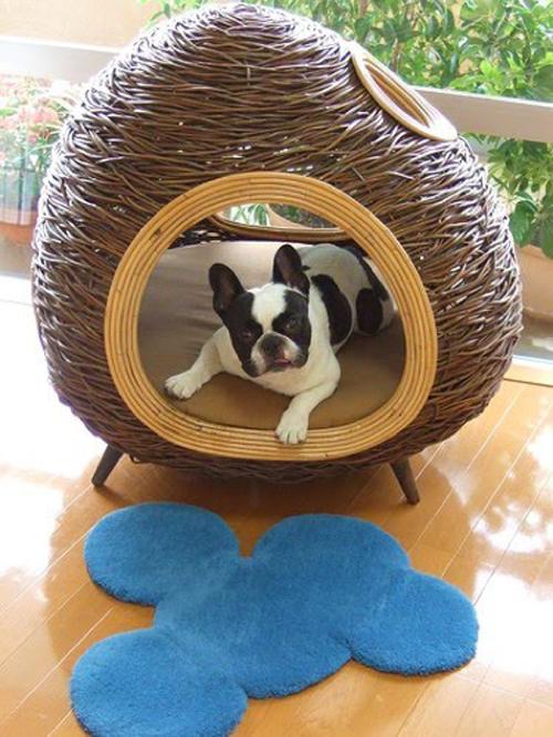 attraktive möbel für haustiere villa juicy dog couture