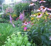 Der Slow Gardening Trend – viele unerwartete Vorteile für Umwelt und Gesundheit