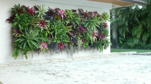 exotische dekoration mit tropischen pflanzen  lebende wanddekoration