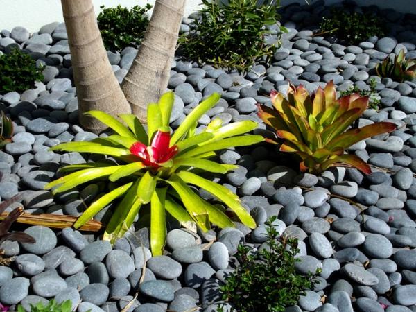 exotische dekoration mit tropischen pflanzen graue kieselsteine