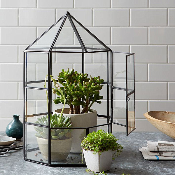 geometrische figuren im interior design glas terrarium