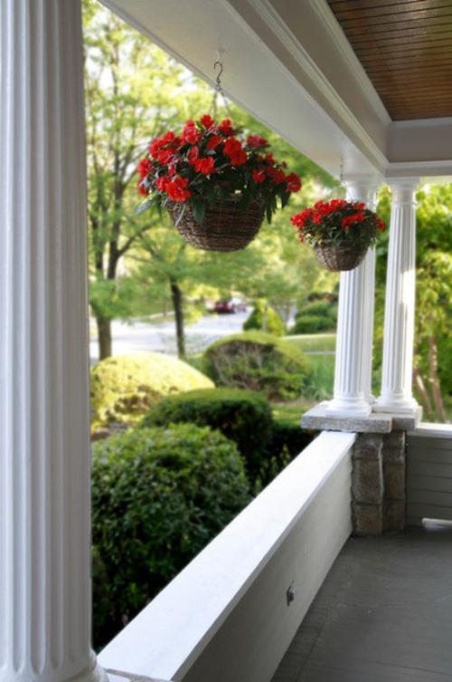 Gefallen Ihnen H 228 Ngepflanzen H 228 Ngende Blument 246 Pfe Auf