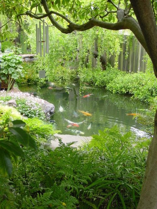 Koi teich im garten anlegen ein extra f rs asiatische for Garten fische