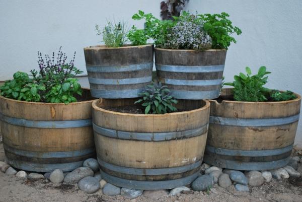 kräuter und gewürze in alten fässern
