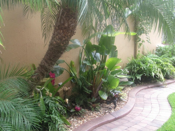 Welche Erde Für Palmen : mit der richtigen palme im garten tropische stimmung schaffen ~ Watch28wear.com Haus und Dekorationen