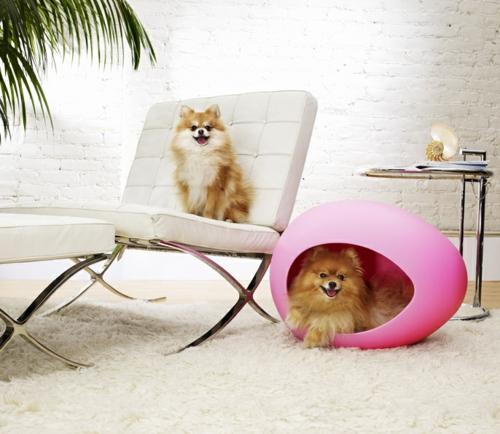 designer rosa möbel für haustiere auffallend design