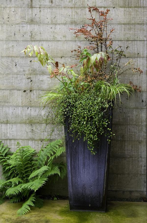 schicke ideen für übertöpfe sehr hoch gemischte pflanzen