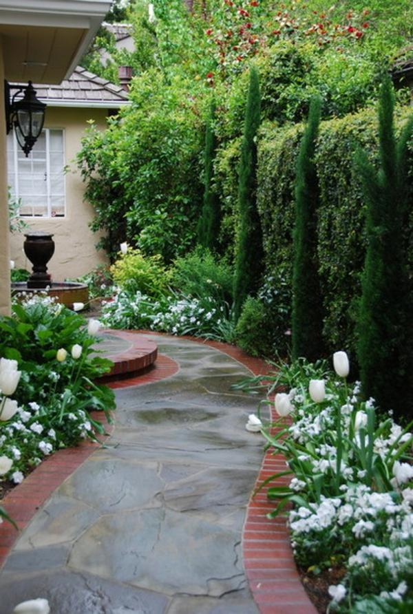 struktur im garten schmale elegante zypressen weiße tulpen