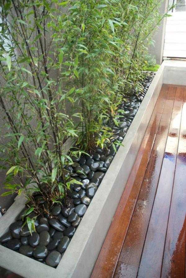 tolle bambus tipps für ihren garten - auch für kleinere flächen, Gartengerate ideen