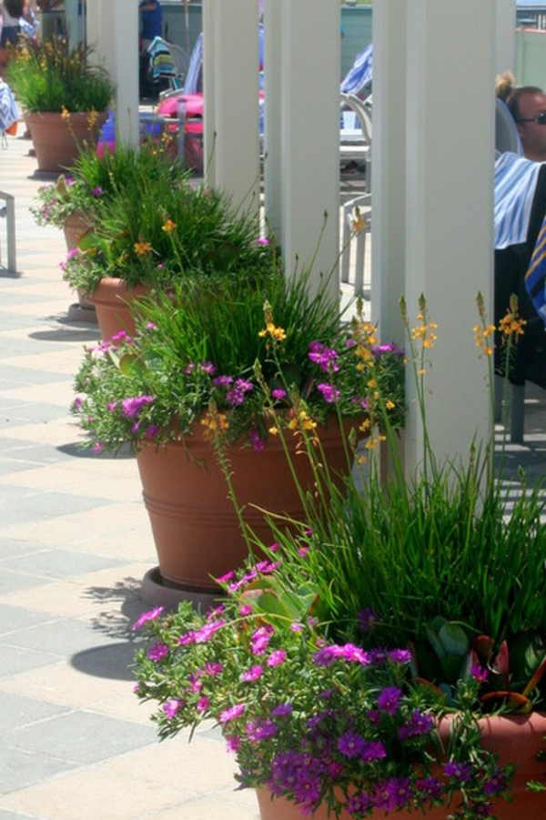 tropische pflanzen in reihen aus keramik