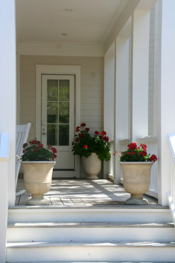 tropische pflanzen im blumentopf eine sommeroase gestalten. Black Bedroom Furniture Sets. Home Design Ideas