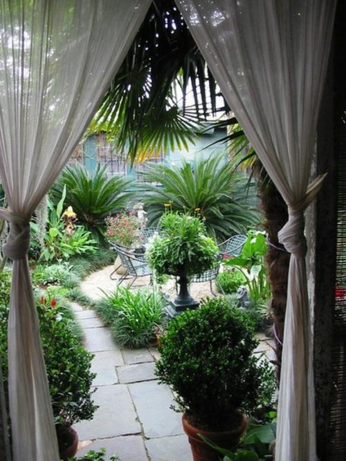 vorhänge und gardinen für den außenbereich pflanzen anbau