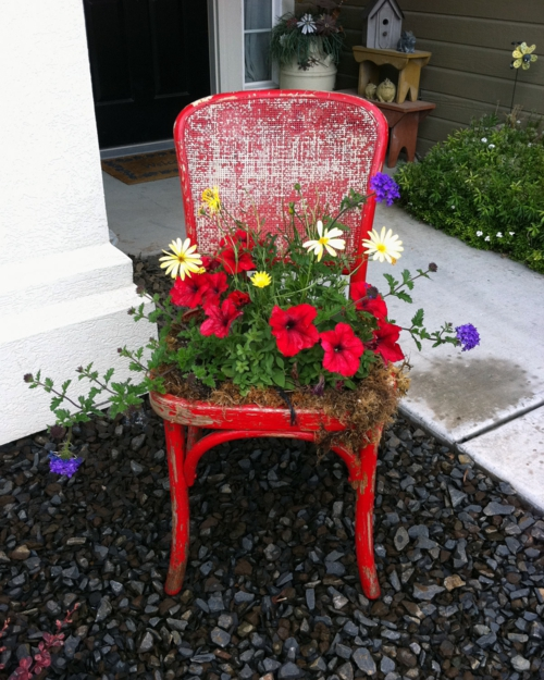 Alte Stühle im Garten mit neuer Funktion rot blüten gelb attraktive Pflanzgefäße
