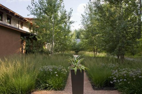 Aus-der-Wildnis-nach-Hause-fußweg-pflanzen-kübel