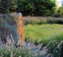 Aus der Wildnis nach Hause: Elemente erlebnisreicher Landschaften